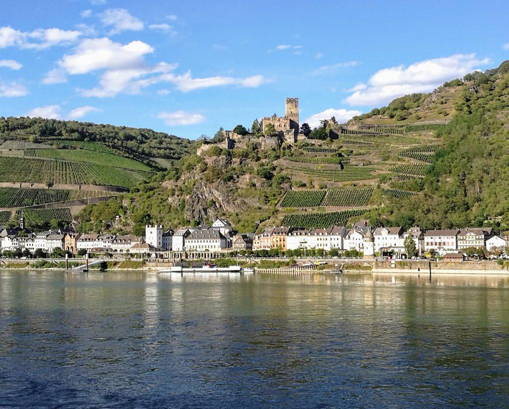 Burgen im Rheintal